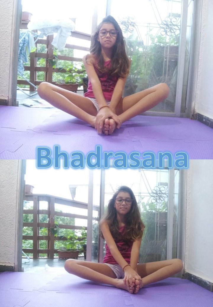 Bhadrasana colagem